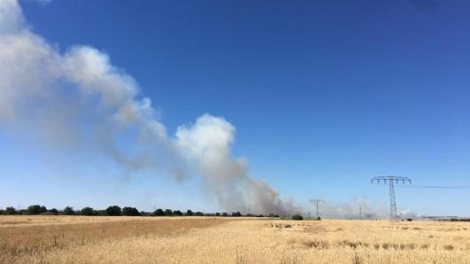 Zwischen den Ortschaften Oberzella und Vitzeroda standen ein Mähdrescher sowie ein Feld in Flammen. (Symbolbild)