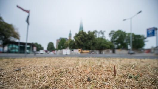 21.07.2018, Thüringen, Erfurt: Ein Stück Rasen ist vor dem Erfurter Domplatz vertrocknet. Die anhaltende Trockenheit bringt etliche Kommunen personell und finanziell an ihre Grenzen. Allein in Erfurt werden täglich 50 000 Liter Wasser vergossen.