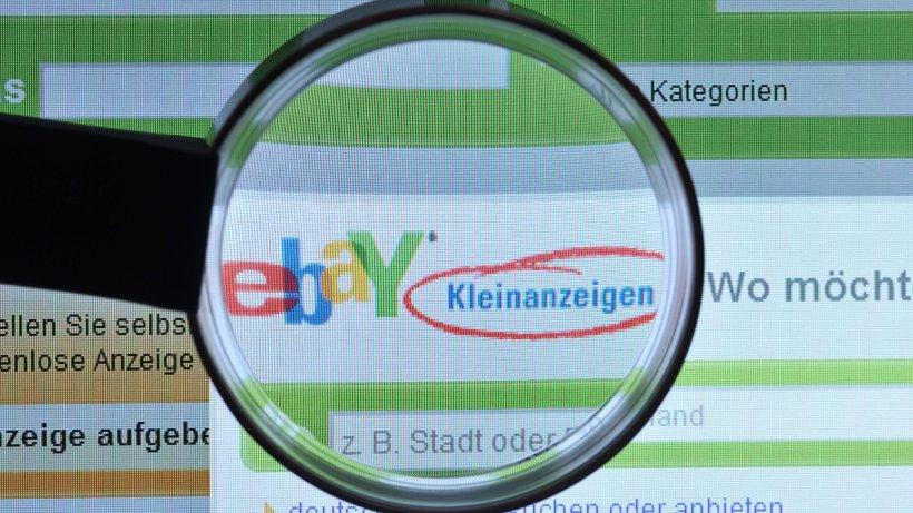 Junge frau aus erfurt sucht job auf ebay dann wird es for Kuchenzeile kleinanzeigen