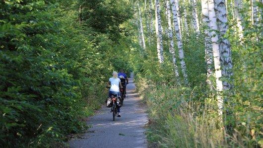 Auf einem Radweg bei Atzmannsdorf in Erfurt entdecke ein Ehepaar etwas ungewöhnliches. (Symbolbild)