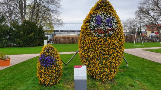 Die Erfurter Puffbohne im Blumenkleid ist eines der Highlights der Buga in Erfurt! Was du noch unbedingt gesehen haben musst, verraten wir dir hier.
