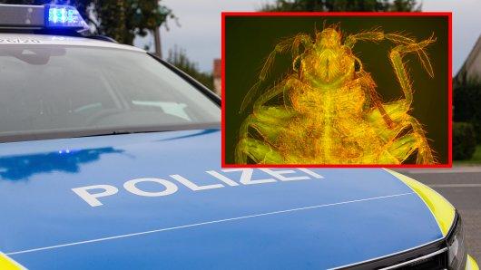 Erfurt: Parasiten haben am Donnerstag einen ganzen Streifenwagen außer Gefecht gesetzt. (Symbofoto)