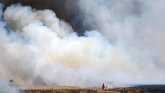 Zahlreiche Feuerwehren waren am Dienstag im Einsatz, um einen 210.000 Quadratmeter großen Flächenbrand im Landkreis Greiz zu löschen.  (Symbolfoto)