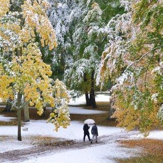 Der erste Schnee in Thüringen. Vor allem im Thüringer Wald gab es den meisten Schnee. (Symbolbild)