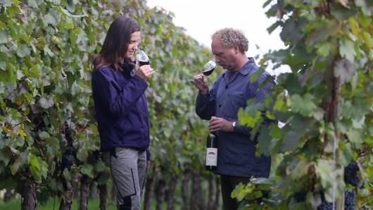 Weinbauhelferin Doreen Klinger und Winzer Matthias Klinger probieren ihren Rotwein (Archivbild).