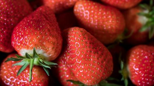 Erdbeeren liegen bei der Eröffnung der Erdbeer-Saison in Gebesee in einem Korb.
