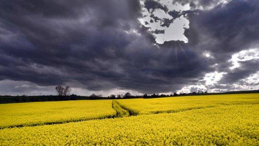 Das Wetter in Thüringen ist am Wochenende für einige Überraschungen gut.