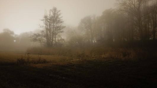Auf einem Feld machte eine Frau bei Andisleben in Thüringen eine besorgniserregende Entdeckung.