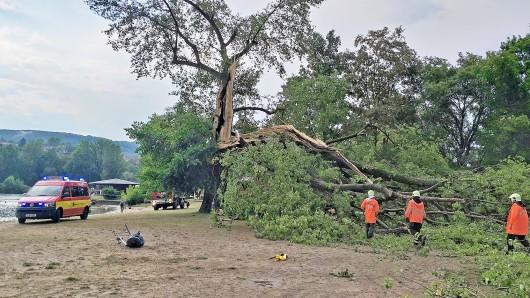 Ein Unwetter sorgte am Samstag (28.07.2018) für Schäden im Stadtgebiet von Jena. Im Südbad (Foto) barst der Stamm einer großen Pappel. Teile des Baumes fielen nieder und verletzten vier Personen teilweise schwer.
