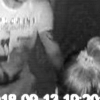 Nach dem Überfall auf zwei Prostituierte in einer Wohnung in Jena hat die Polizei dieses Fahndungsfoto veröffentlicht.