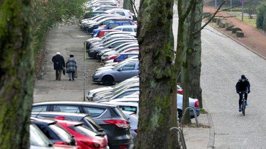 Wer sein Auto unter Bäumen parkt, muss mit viel Dreck rechnen. (Symbolbild)