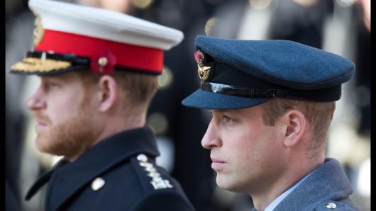 Prinz William und sein Bruder Harry: Wie gut verstehen sich die beiden wirklich?
