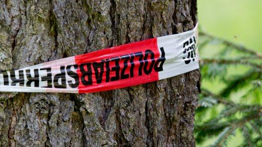 In einem Wald bei Floh-Seligenthal ist ein Toter gefunden worden. (Symbolfoto)