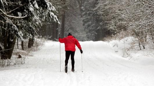 Ein Skilangläufer läuft in einer Loipe durch den Wald. (Symbolfoto)