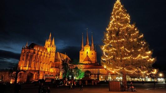 Der leuchtende Mittelpunkt des Erfurter Weihnachtsmarktes wird am Samstag zeremoniell aufgestellt und geschmückt.
