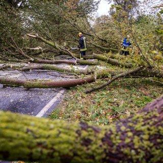 In Thüringen ist Vorsicht geboten, ein Sturm mit orkanartigen Böen zieht über den Freistaat. (Archivfoto)