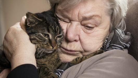 Sie lebt seit Jahren an der Seite ihres Frauchens. Sogar ins Pflegeheim begleitete Möhrchen ihre Halterin. Jetzt muss sie jedoch ausziehen.  (Symbolbild)