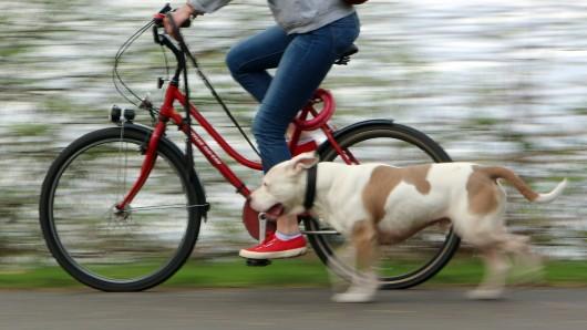 Mit Hund und Fahrrad die Gassirunde machen. Das wurde für eine Frau und Tier ziemlich gefährlich.