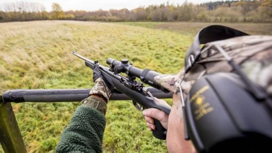 Bislang waren dazu nur vom Ministerium beauftragte Jäger ermächtigt, die Wolfshybriden zu schießen. Das soll sich jetzt ändern.