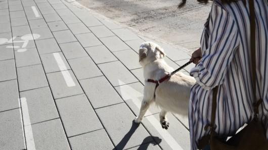 Eine Frau lief mit ihrem Hund durch ein Wohngebiet und schrie um Hilfe.