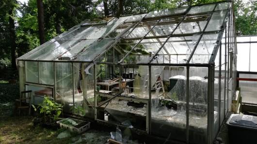 Das Kaltgewächshaus im Botanischen Garten Gera wurde zertrümmert.
