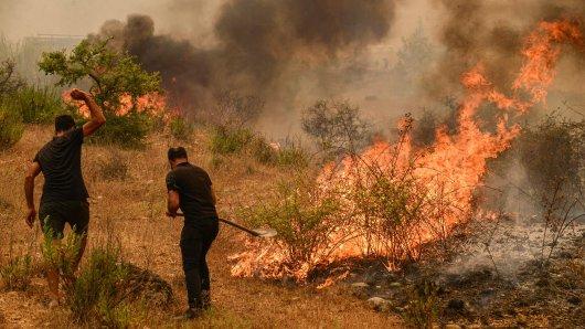 Urlaub in der Türkei: Viele Menschen kämpfen um bei Waldbränden in Antalya um ihr Leben.