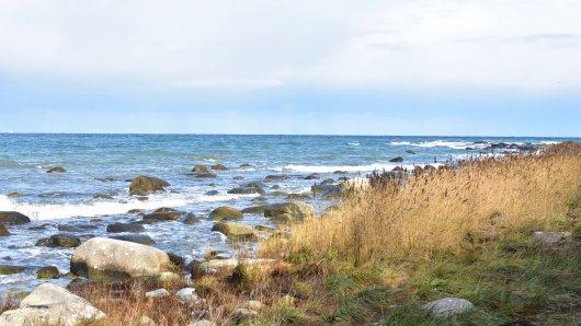 Die Ostsee steht kurz vor dem Kollaps! (Symbolbild)