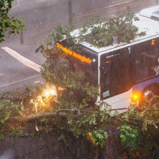 Am Freitag (17.08.2018) ist ein Unwetter über Teile Thüringens gezogen, besonders betroffen war unter anderem Weimar.