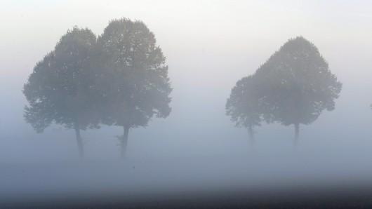 Der Deutsche Wetterdienst hat schon am zweiten Tag in Folge vor Nebel in Thüringen gewarnt. (Symbolfoto)