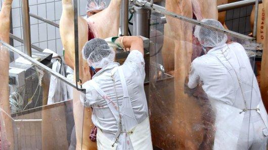 Die Polizei führt eine Razzia in der Fleischindustrie durch. 800 Beamte sind in fünf Bundesländern im Einsatz. (Symbolbild)